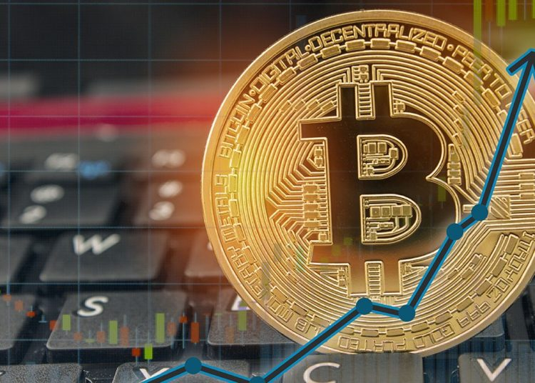Could Another Cryptocurrency Ever Become More Valuable than Bitcoin?